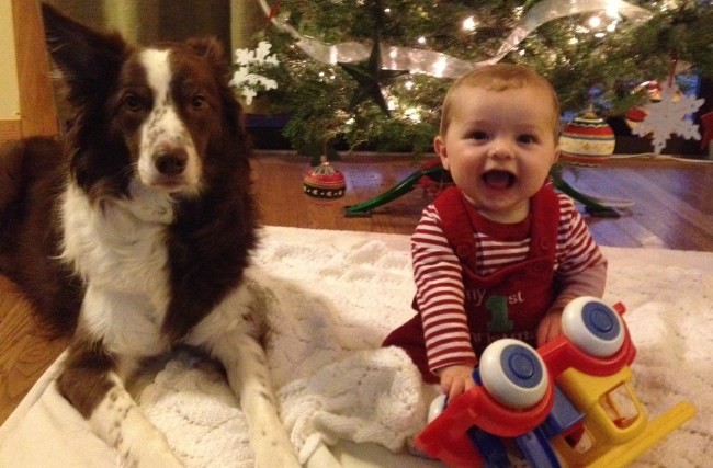 Jack and Ned - 12-25-2012