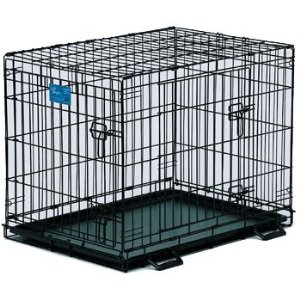 Crate Training your Border Collie